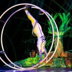 Цирк «Bravo» — представления на Суккот с 28 сентября по 3 октября