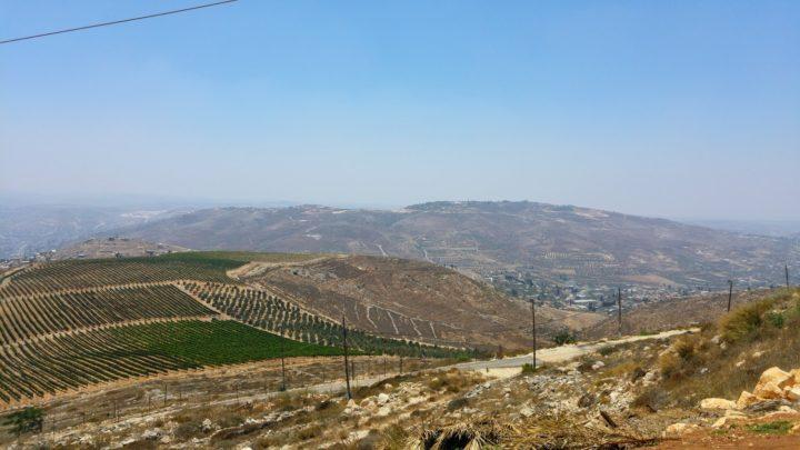 О правомерности поселений в Иудее и Самарии