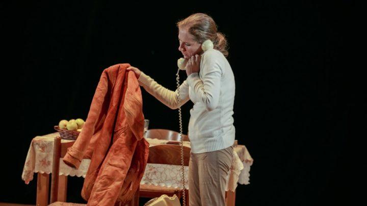 Вечер Дины Рубиной в Художественном музее в Хайфе. Моноспектакль «Яблоки» и встреча с писательницей