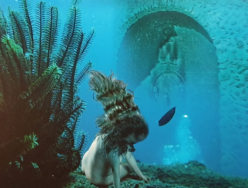 Фотовыставка «Обнаженная натура» в арткафе «Зебра»