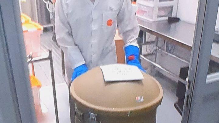 Клетки плаценты победят коронавирус? Предложенное израильтянами из Хайфы лечение заинтересовало весь мир