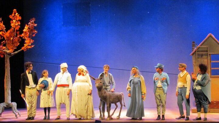 30-й Хайфский театральный фестиваль спектаклей для детей он-лайн дома в салоне