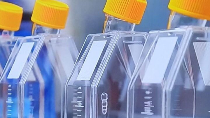 Сегодня в Израиле начались клинические испытания вакцины против коронавируса на людях. Удачи и здоровья добровольцам!
